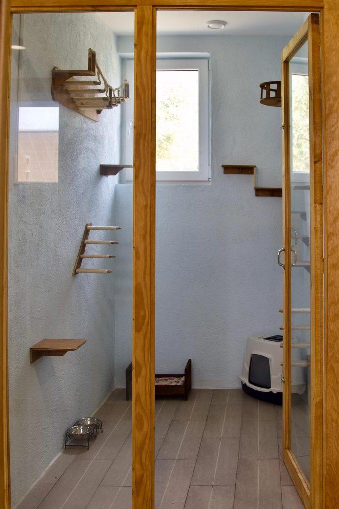 Residencia felina para gatos en Barcelona